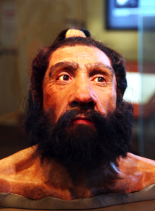 Homo_neanderthalensis_adult_male_-_head_model_